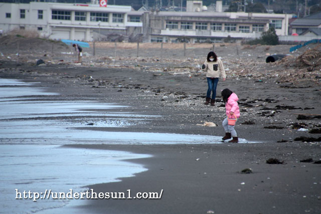 館山那古海岸にてビーチコーミング
