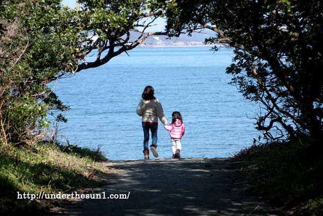 沖ノ島で撮影