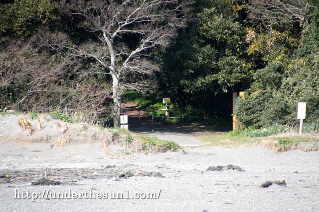 館山沖ノ島入り口