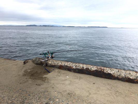 金谷港堤防釣り